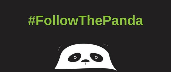 #followthepanda.png